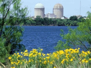 Comanche Peak Nuclear Power Plant