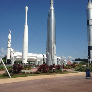 Just a few rockets growing in the Rocket Garden