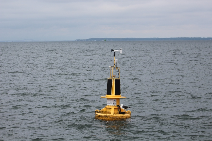 Stingray Point buoy