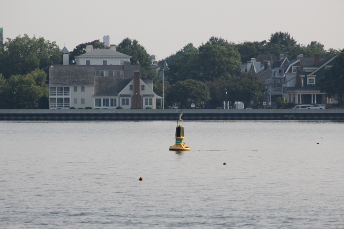 Norfolk Buoy