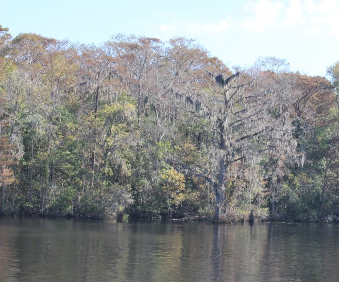 STM 390, Waccamaw River