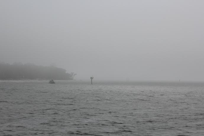 Foggy, Foggy Morning