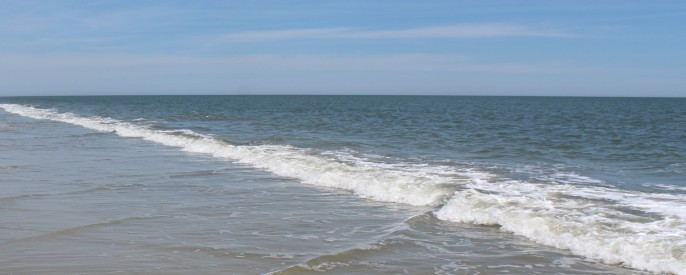 IMG_0019, Sea Pines Beach