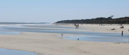 IMG_0026, Sea Pines Beach