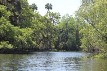 IMG_0066, Snake Creek