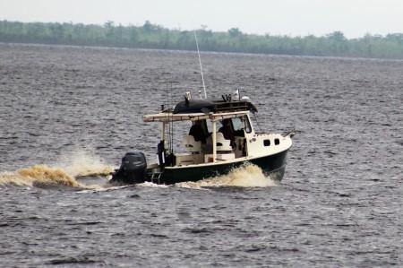 IMG_0003, Aligator River
