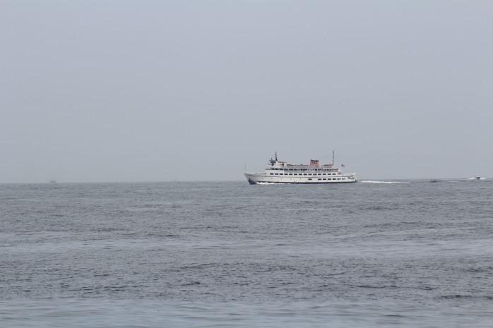 100 Ferry