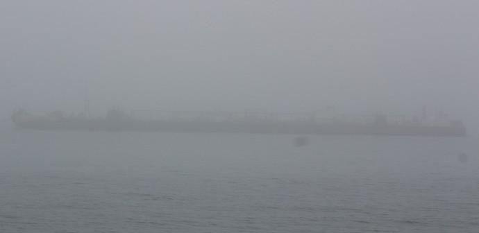 24 Connecticut Fog